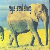 Negus Stand Strong de Various Artists