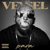 Para by Veysel