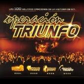 Las 100 Mejores Canciones De La Historia De O.T (Operación Triunfo) de Various Artists