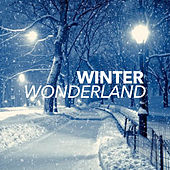 Winter Wonderland de Deep House