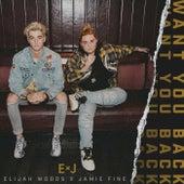Want You Back by Elijah Woods x Jamie Fine