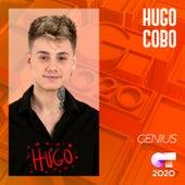 Genius by Hugo Cobo