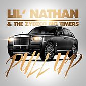 Pull Up de Lil Nathan And The Zydeco Big Timers