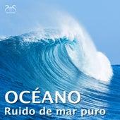 Ruido de mar puro - el océano von proyecto de ruido del mar TA