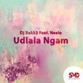 Udlala Ngam de Dj Bakk3