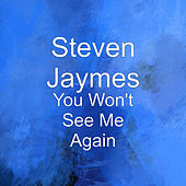 You Won't See Me Again by Steven Jaymes