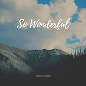 So Wonderful by Daniel Taylor