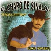 Tienda Surtida Y Puros Corridos de El Chapo De Sinaloa