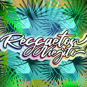 Reggaeton Viejito de Various Artists