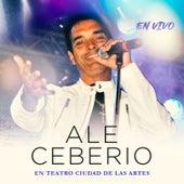 En Teatro Ciudad de las Artes von Ale Ceberio