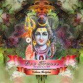 Goa Trance, Vol. 42 de Various Artists