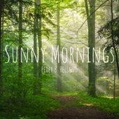 Sunny Mornings van Peder B. Helland