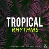 Tropical Rhythms von Various Artists