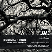 Irreversible Thirteen by Various Artists
