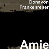 Amie by Donavon Frankenreiter