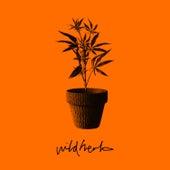 Wild Herb by Jehst