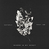 Where Is My Mind? by Esterly