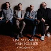 Eine Schwalbe, kein Sommer by Karo Nero