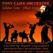 Schöne Töne - Ohne Worte de Tony Cajee Orchester