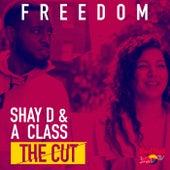 Freedom de Shay D