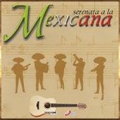 Serenata A La Mexicana by Vários Artistas