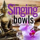 Tibetan Singing Bowls and Nature Sounds von Giacomo Bondi