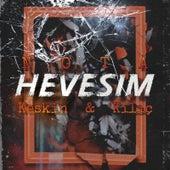 Hevesim by N.O.T.A.