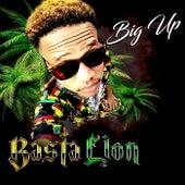 Big Up de Basta Lion