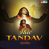Shiv Tandav by Cobra