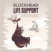Life Support (CNJR Remix) by Blockhead