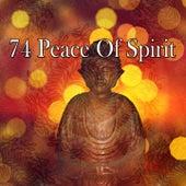 74 Peace of Spirit de Massage Tribe
