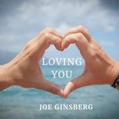 Loving you de Joe Ginsberg