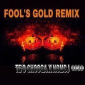 Fool's Gold (Remix) de Te'o Chooga