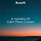 A Handful Of Calm Piano Covers de BodyHI