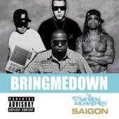 Bring Me Down (Swollen Mix) (feat. Saigon) - Single by Swollen Members