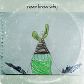 Never Know Why de Kevin Rudolf