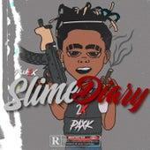SlimeDiary by Paxk2x