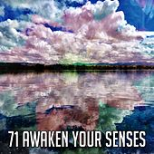 71 Awaken Your Senses by Japanese Relaxation and Meditation (1)