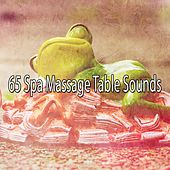 65 Spa Massage Table Sounds by Deep Sleep Music Academy
