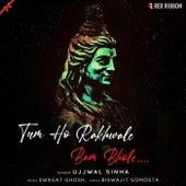 Tum Ho Rakhwale Bam Bhole by Ujjwal Sinha