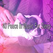 40 Peace in Music for Sleep by Ocean Sounds Collection (1)