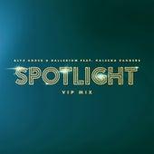 Spotlight (feat. Kaleena Zanders) [VIP Mix] de Alyx Ander