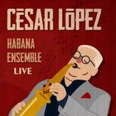 20 Años de Habana Ensemble (En Vivo) by César López y Habana Ensemble