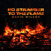 No Stranger to the Flame by David Wilcox