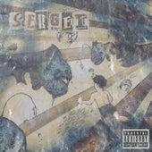 sinner (feat. WOS) by Sergei