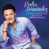 Como Te Extraño Mi Amor von Pedro Fernandez