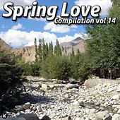 SPRING LOVE COMPILATION VOL 14 de Tina Jackson