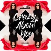 Crazy About You (Remixes) von Plumb
