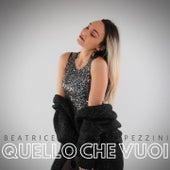 Quello che vuoi de Beatrice Pezzini