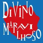Divino Maravilhoso (Cover) von Bloco do Prazer